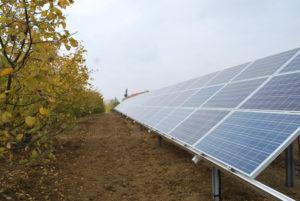impianto fotovoltaico presso azienda agricola realizzato in collaborazione con Spea